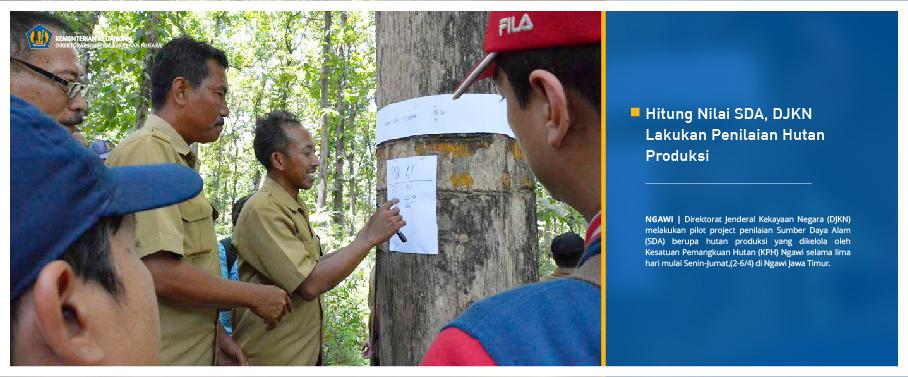 Hitung Nilai SDA, DJKN Lakukan Penilaian Hutan Produksi