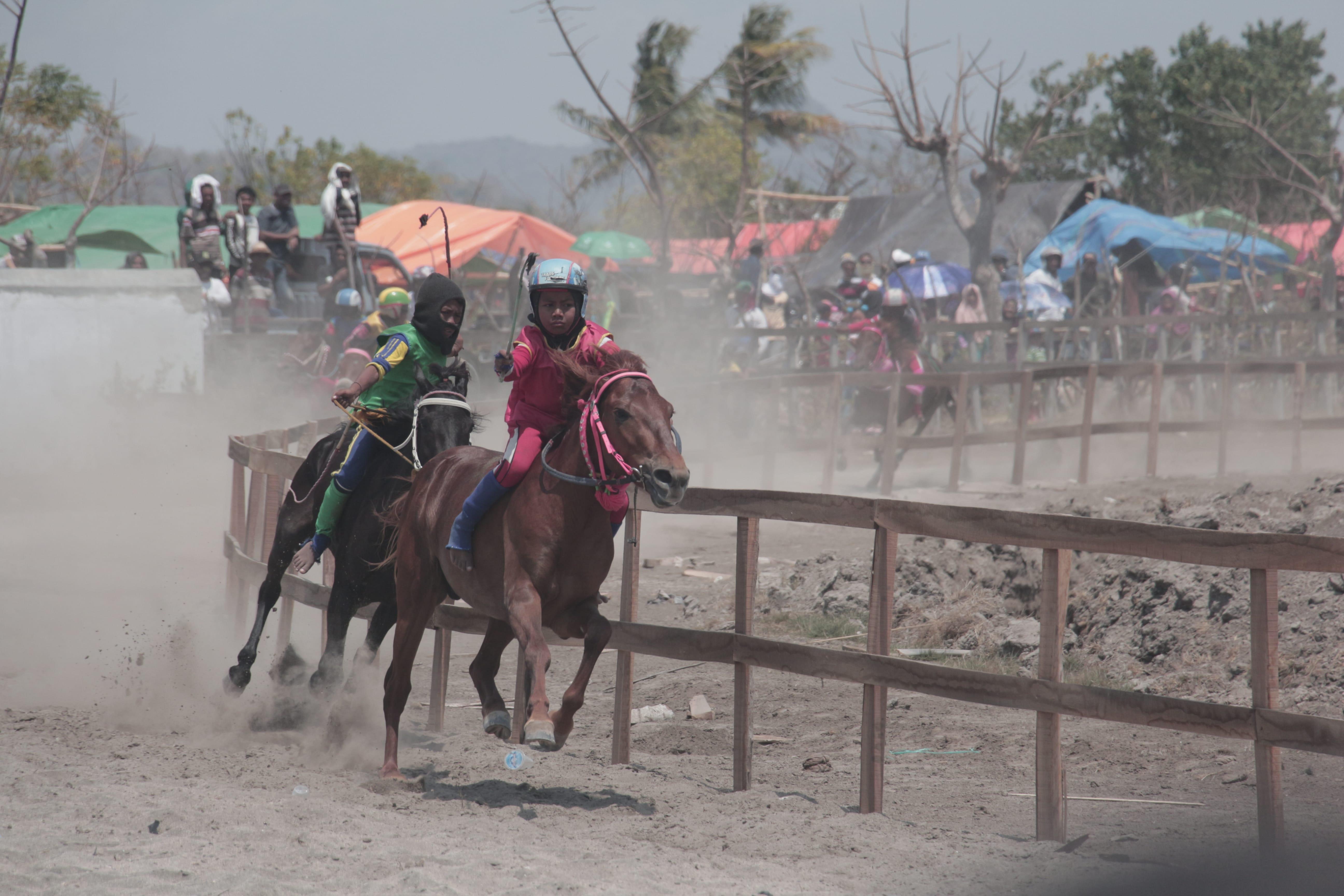 Festival Moyo Ditutup dengan Serunya Pacuan Kuda di Arena Angin Laut