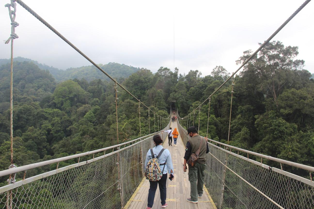 Pemanfaatan BMN Taman Nasional Gede Pangrango untuk mewujudkan Eco-wisata Kelas Dunia