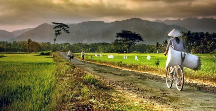 PMK 115/2020,Suatu Kontribusi  Bagi  Desa