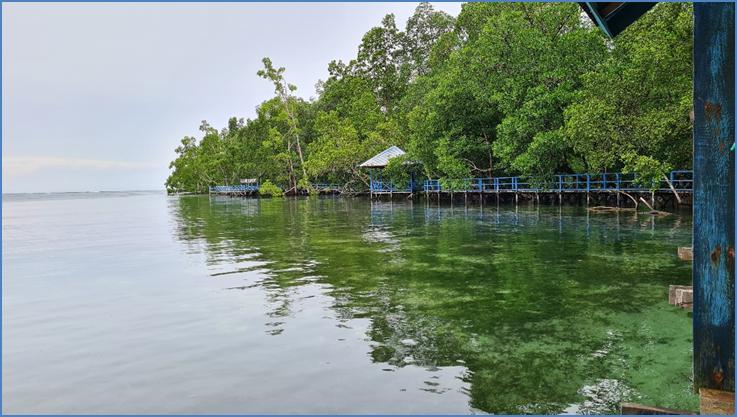 Analisis Valuasi Ekonomi Objek Wisata Pantai Sorendiweri Menggunakan Travel Cost Method