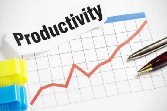 Mengukur Produktivitas Kinerja Selama Pandemi